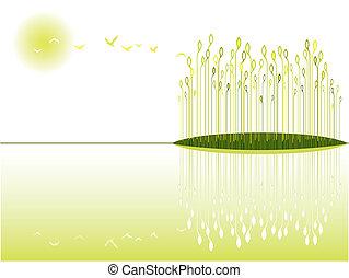 湿地, 光景