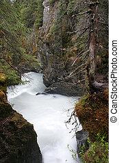 溪, 在, 狹窄, 山谷