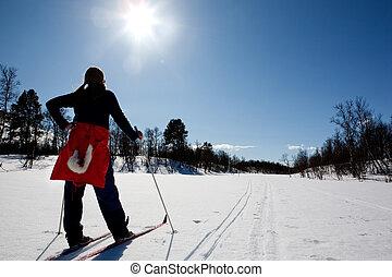 滑雪的十字形國家