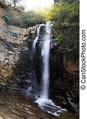 滝, 太陽, コケむした, ビーム, 岩, 大きい, 森林, 雨