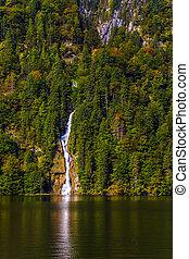 滝, 森林, 絵のよう