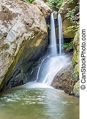 滝, rainforest