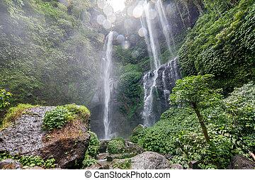 滝, sekumpul, 光景