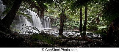 滝, tassie