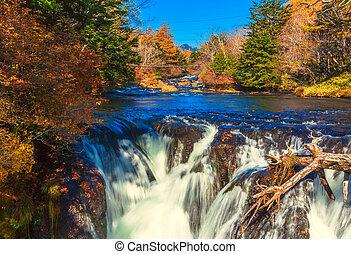 滝, yukawa