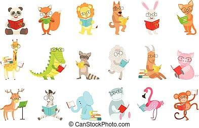 漂亮, 動物, 字符, 閱讀, 書, 集合