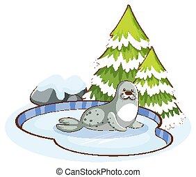 漂亮, 場景, 封印, 雪