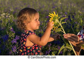漂亮, 孩子, 由于, 向日葵, 在, 夏天, 領域