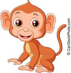 漂亮, 小猴子