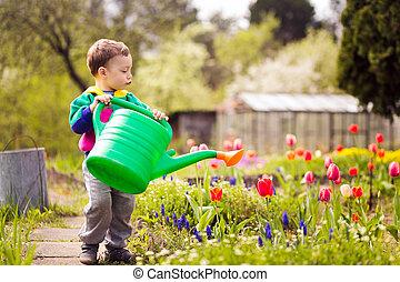 漂亮, 很少, 给花浇水, 男孩