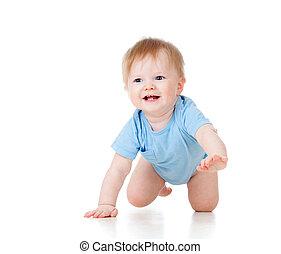 漂亮, 快樂, 爬, 男嬰, 被隔离, 在懷特上, 背景