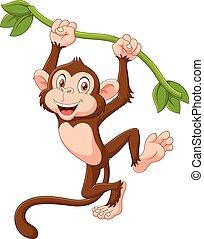 漂亮, 猴子, 動物, 懸挂