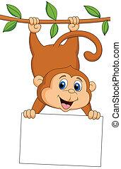 漂亮, 猴子, 由于, 空白徵候