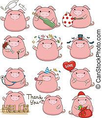 漂亮, 豬, 集合