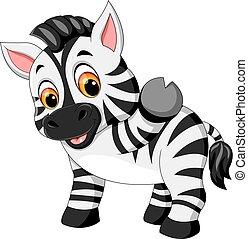 漂亮, zebra