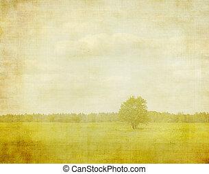 漂白, 圖像, ......的, a, 樹, 上, a, 葡萄酒, 紙