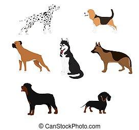 漫画, 犬, set.