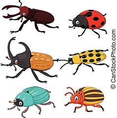 漫画, 面白い, かぶと虫, コレクション