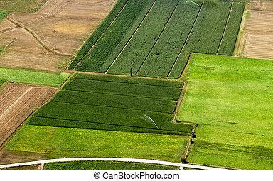 潅漑された, 農作物栽培, 航空写真