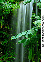 瀑布, 在中, the, 热带雨林