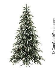 火をつけられた, 木, クリスマス, 雪
