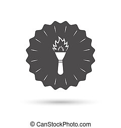 火, トーチ, シンボル。, 印, 炎, icon.