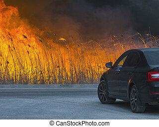 火, 巨大, について, 危ない, 自動車