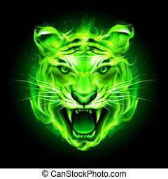 火, 緑, tiger.