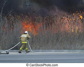 火, 置かれた, 急ぎ, から, 消防士