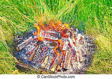 火, 自然