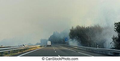 火, 道, 森林