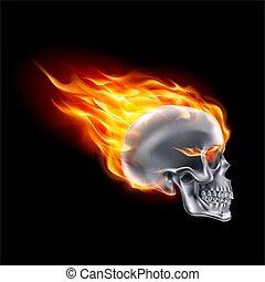 火, 頭骨