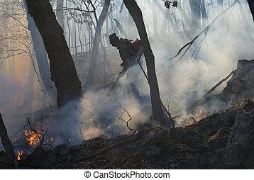 火, 24, 森林, 抑止