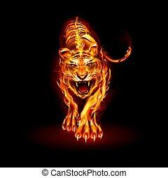 火, tiger