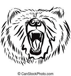 灰熊, 姿態, 熊, 培養, 頭, 憤怒