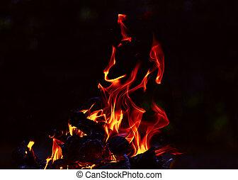 炎, 夜, darkness., campfire., たき火