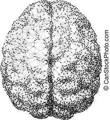 点, consist, 上, ライン, 脳, 接続される, 人間, 光景