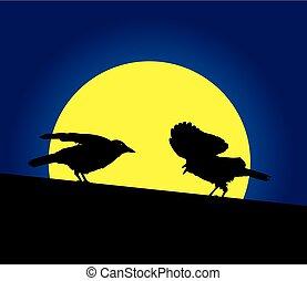 烏鴉, 上, a, 屋頂, 由于, 滿月