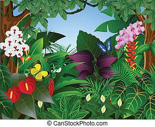 热带的森林, 背景