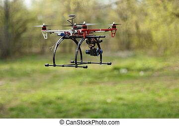無人機, 飛行, 中に, 森林