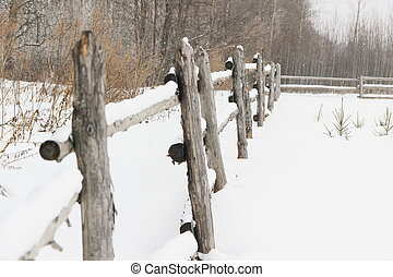 無作法, 木製のフェンス