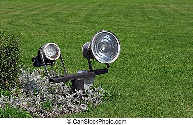 照明, 日光, 草, 緑, 庭