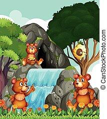 熊, 滝, 弛緩