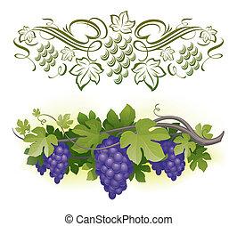 熟した, &, -, つる, イラスト, calligraphic, ベクトル, decorarative, ブドウ