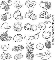 熱帯フルーツ