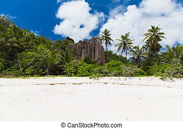 熱帯 島, セイシェル, 浜