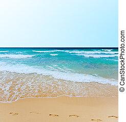 熱帯 島, 浜, 日当たりが良い