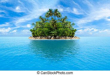 熱帯 島, 海洋