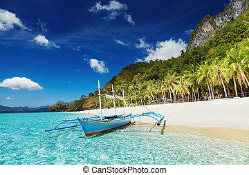 熱帯 浜, フィリピン