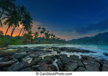 熱帯 浜, 日の出